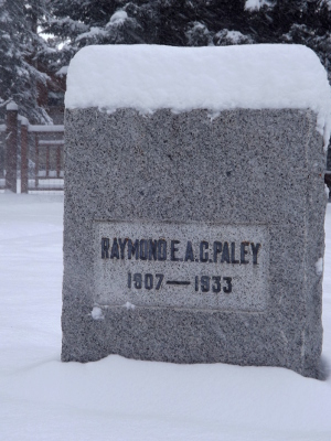 Paley's grave
