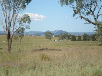 Gowrie Mountain